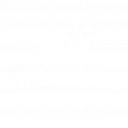 Tiny Town Beer Co Logo